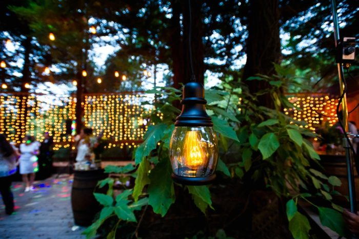 Burton Lighting vintage look LED The Burton Bulb in outdoor garden lighting decor