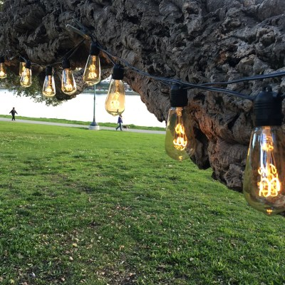 Burton Lighting outdoor string lights with vintage look LEDs The Burton Bulb