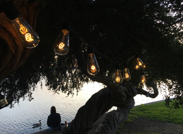 Burton Lighting outdoor string lights create romantic ambiance near a lake with The Burton Bulb