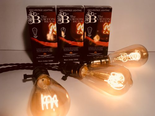 LED Edison Bulbs String Lights